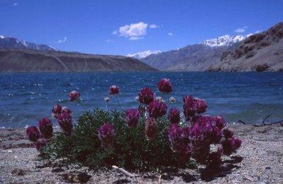 A lake in northern Badakshan, Afg near the Tajik border